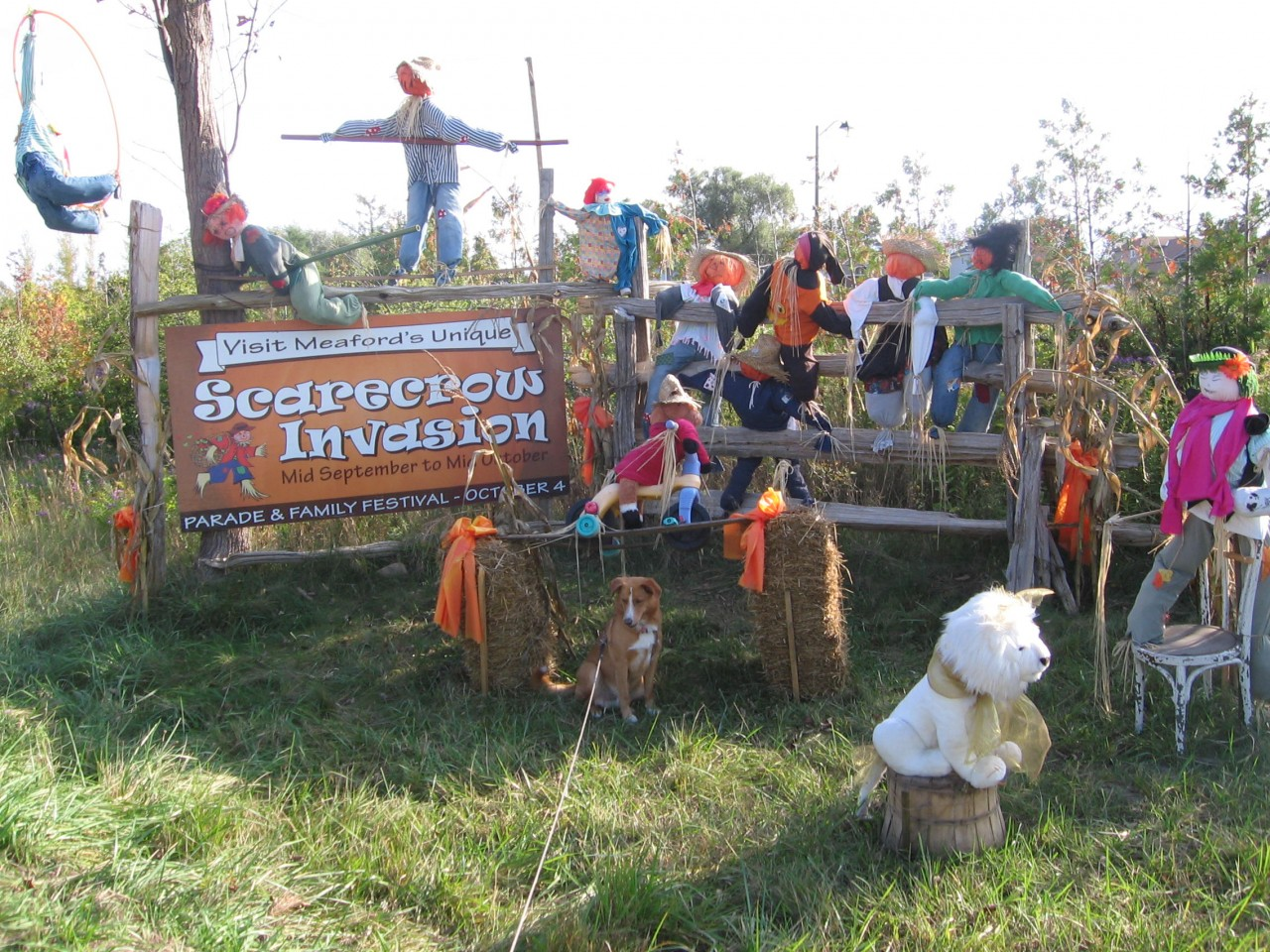 Scarecrow Invasion