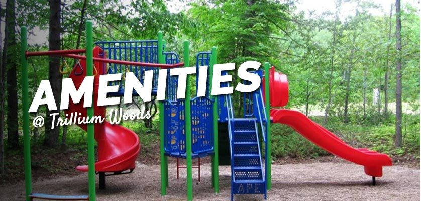 amenities at trillium woods