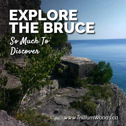 Explore the Bruce Peninsula