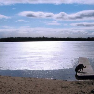 Trillium Woods Campground Beach